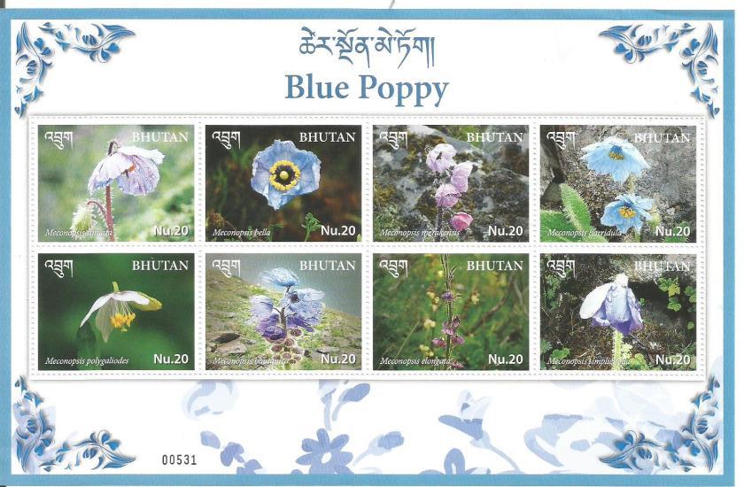 BHUTAN BLUE POPPY SHEETLET