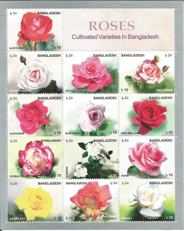 ROSES BANGLADESH
