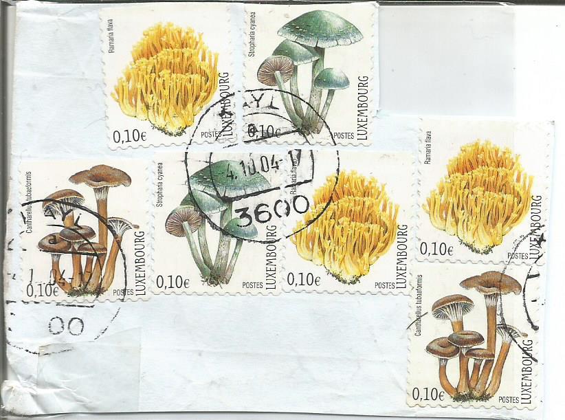luxembourg fungi