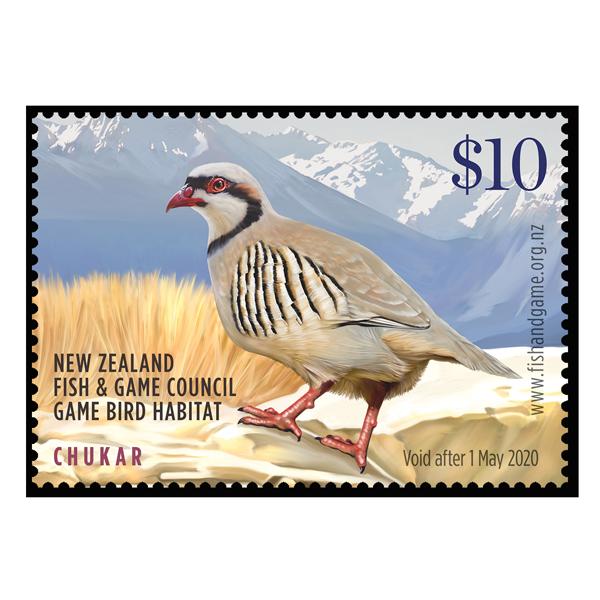 NZ CHUKAR 2019