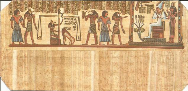 EGYPT FORENSIC CVR BACK