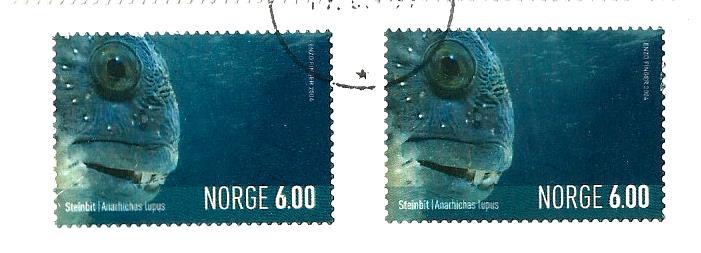 NORWAY FISH