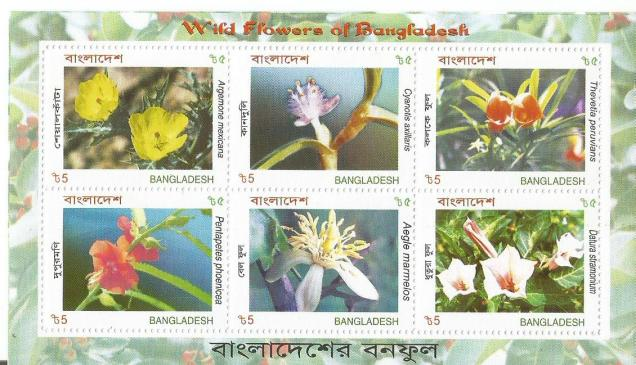 BANGLADESH MS WILD FLOWERS