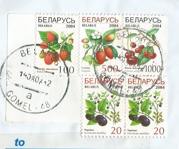 BELARUS FRUITS