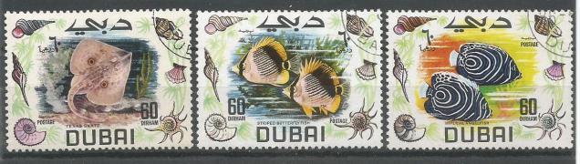 DUBAI FISHES 1
