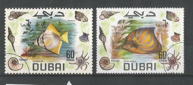 DUBAI FISHES 3