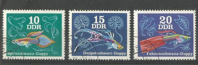 GDR GUPPY 1