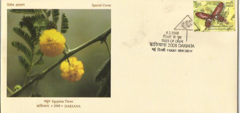 INDIA DAKIANA 18 1