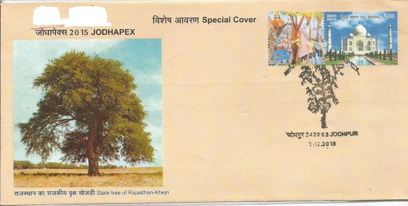 INDIA SPECIAL COVER KHEJRI