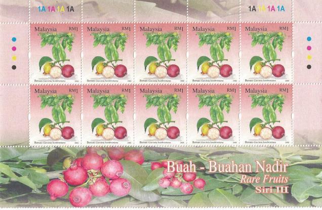 MALAYSIA RARE FRUITS 2