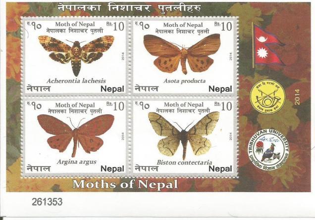 NEPAL MS 2014 MOTHS 1