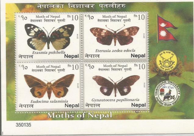 NEPAL MS 2014 MOTHS 2