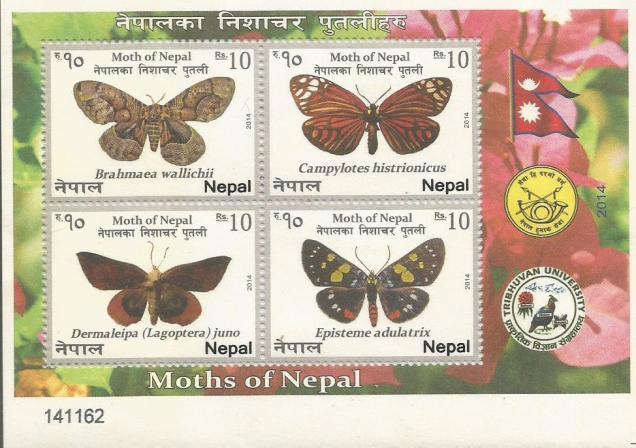 NEPAL MS 2014 MOTHS 3
