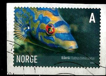 NORWAY FISH A