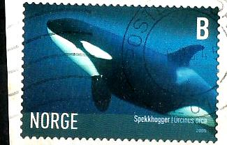 NORWAY WHALE