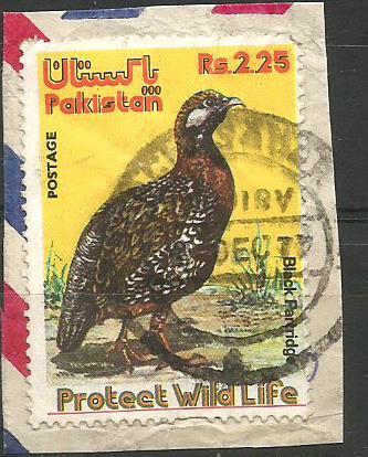PAKISTAN WILDLIFE CONSERVATION
