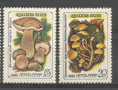 USSR MUSHROOMS1