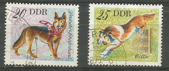 GDR DOGS 1976