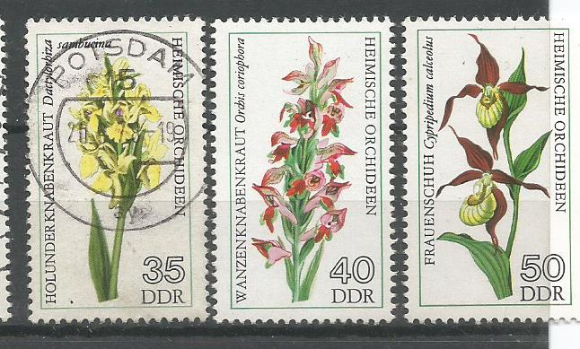 GDR ORCHIDS 2