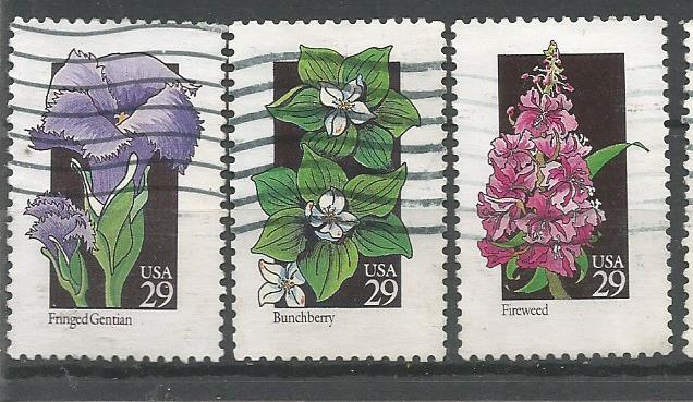 USA FLOWERS 1992 3