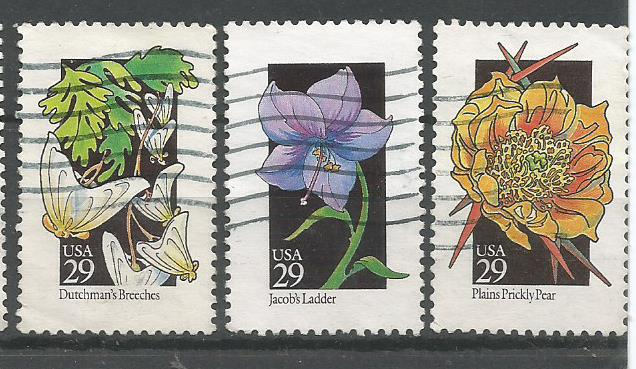 USA FLOWERS 1992 4