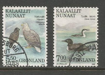 GREENLAND BIRDS 88 2