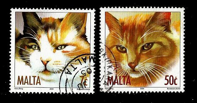 MALTA CATS