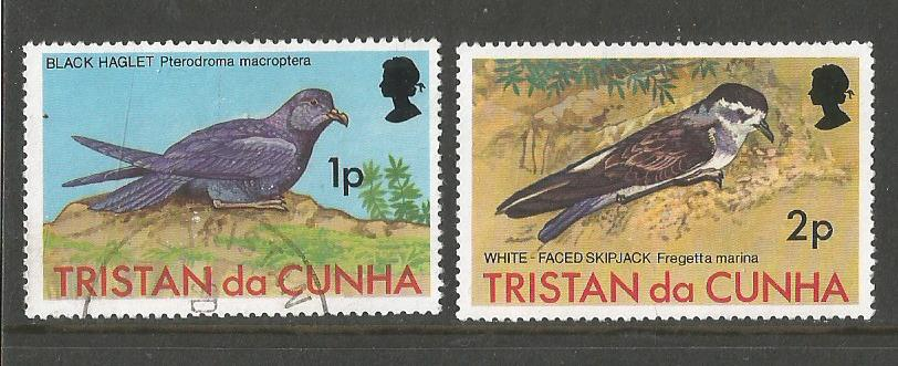 TRISTAN BIRDS