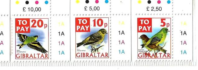 GIBRALTAR BIRDS TO PAY2