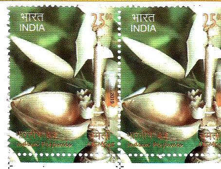 INDIA JASMINE