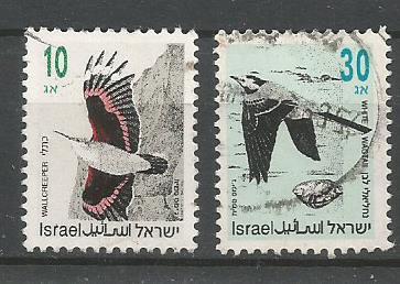 ISRAEL SONG BIRD 1