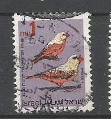 ISRAEL SONG BIRD