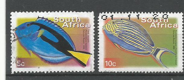 SA FISHES1