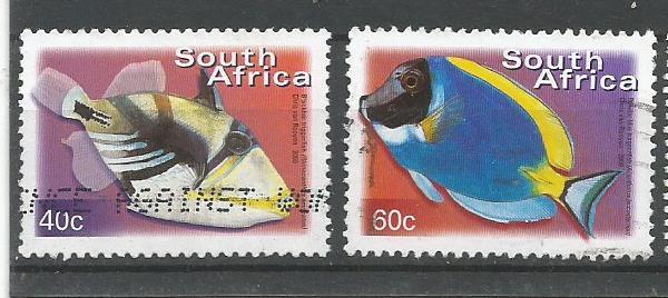 SA FISHES3