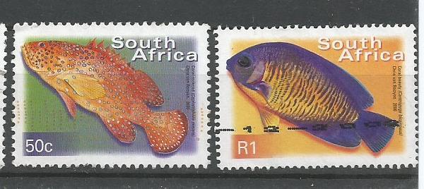 SA FISHES4