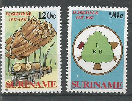 SURINAM FORESTRY
