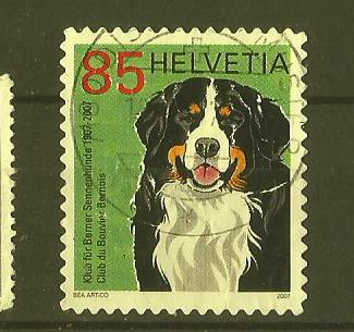 SWITZERLAND KENNEL