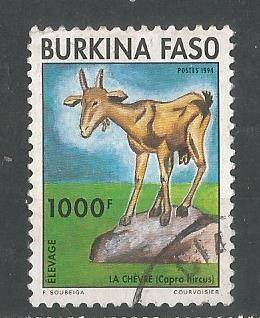 BURKINA FASO FAUNA1