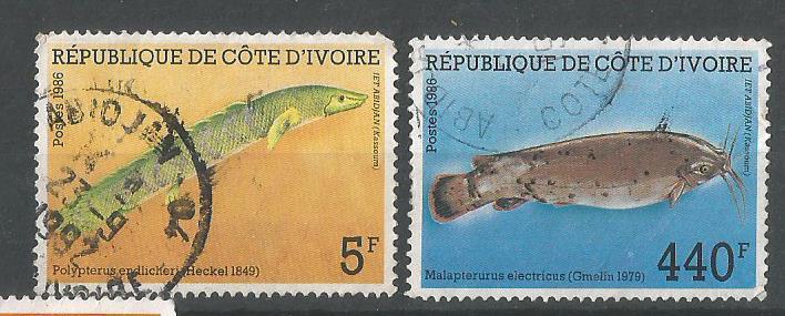 IVORY COAST FISHES