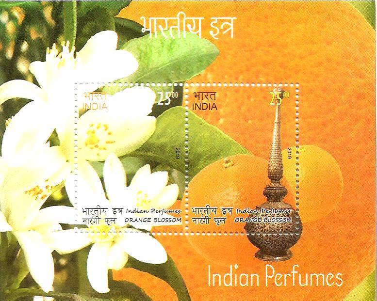 INDIA MS 2019 -ORANGE PERFUME
