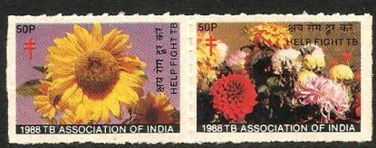 INDIA TB SEALS 1988-2