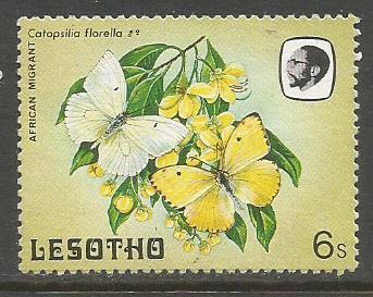 LESOTHO FLOWERS