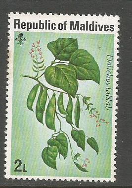 MALDIVES FLOWERS 2