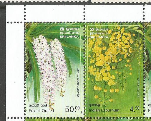 SRI LANKA FLOWERS1
