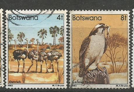 BOTSWANA BIRDS 2
