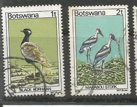 BOTSWANA BIRDS 4