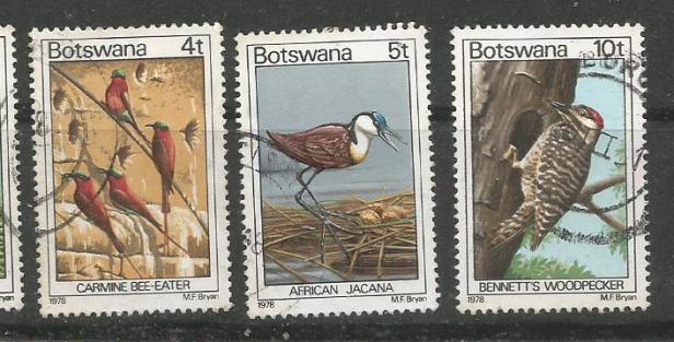 BOTSWANA BIRDS 5