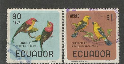 ECUADOR BIRDS 1