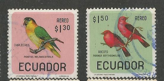 ECUADOR BIRDS 2