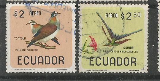 ECUADOR BIRDS 3